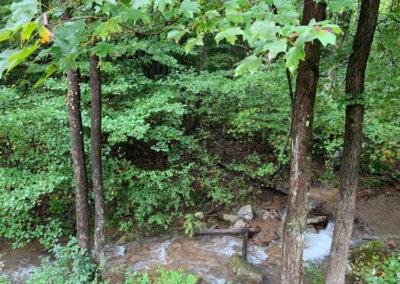Cougar Cabin - Mountain Creek